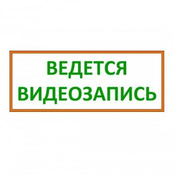 """Наклейка """"Ведется видеозапись"""" (Самоклейка)"""
