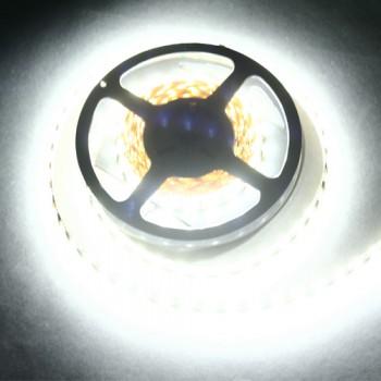 Лента светодиодная для подсветки (LED) Artpole 004077 SMD5050 холодный белый