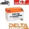 Аккумуляторная батарея Delta CT 1210.1