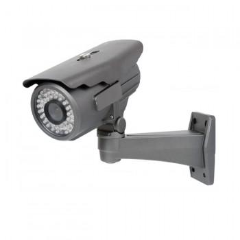Видеокамера купольная цветная RVi-169LR